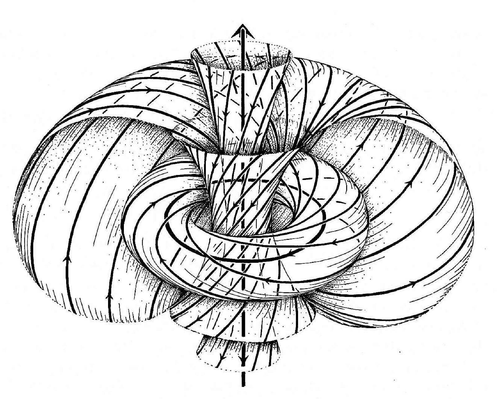 Okternionen geometrisch dargestellt