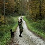 Wie in Österreich (Jagd-)Gesetze entstehen: der Blick aus der ersten Reihe