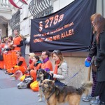 Van der Bellen: Besuch im Gefängnis