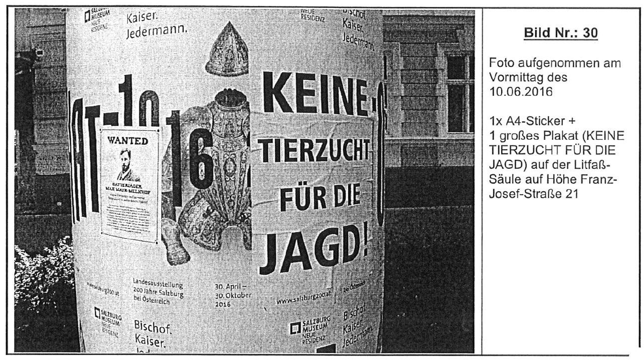 PlakatFranzJosefStraßeKeinPickerl