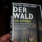 Jäger und Förster Peter Wohlleben fordert die Abschaffung der Jagd