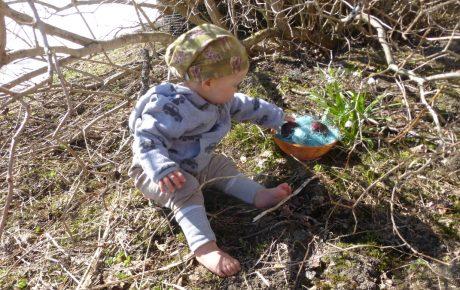 Die Einstellung von Kindern zu Natur, Tieren und Gewalt