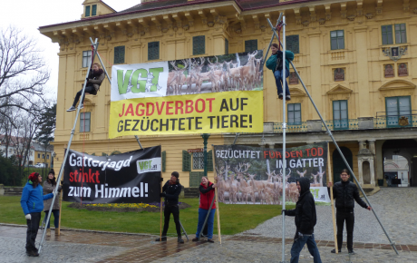 Warum will Landeshauptmann Doskozil das Gatterjagdverbot im Burgenland kippen?