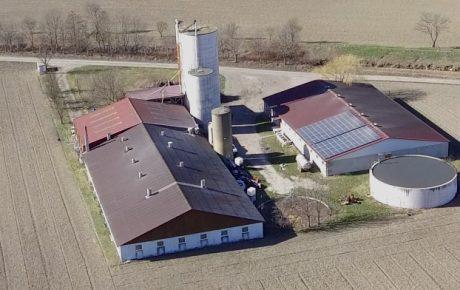 Anzeige gegen Landwirtschaftsministerin Köstinger nach § 177 StGB wegen fahrlässiger Gemeingefährdung durch Zoonosen aus Tierfabriken